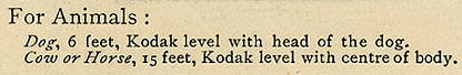 Kodak's recommendation for photographing dogs and cows, circa 1890