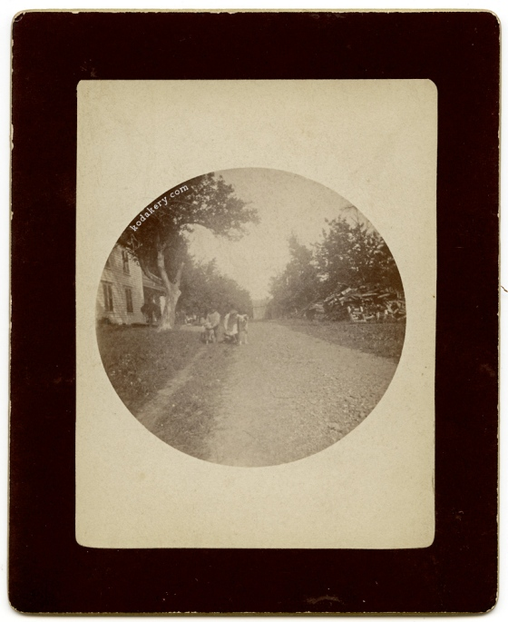 Circa 1890 photograph of dog from a Kodak Original or No. 1 Camera